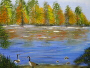 Fall Geese 16 x 20 H $200