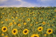 Field of Sunflowers 16 x20 on wood  sold