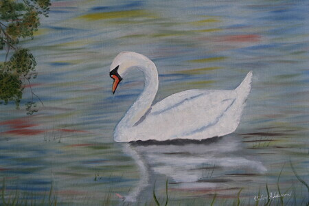 Swan on the Avon in Stratford 16x20 $250