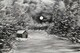 Winter Cabin 16 x 20 $175